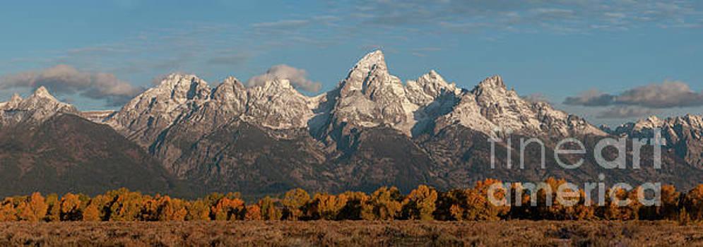 Grand Teton Fall Splendor by Sandra Bronstein