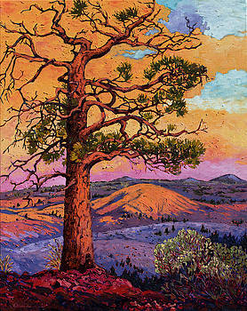 Grandfather Pine Tree by Rebecca Baldwin