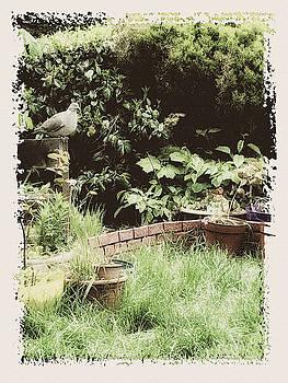 Grandma Garden by Tatiana Travelways