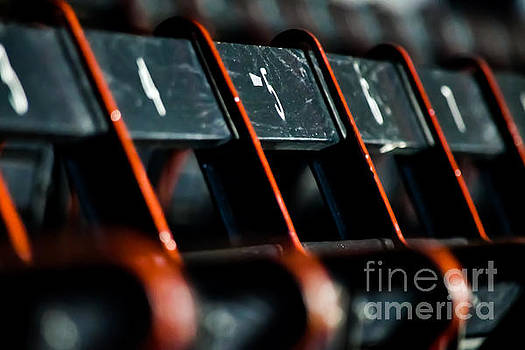 Grandstand Seats by SoxyGal Photography