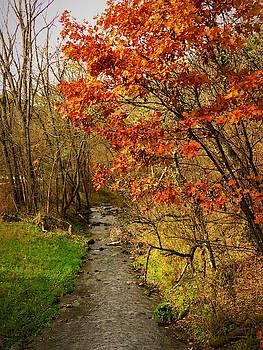 Grannis Creek  by Lori Frisch