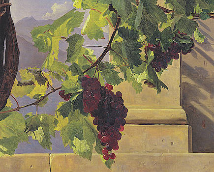 Grapes by Ferdinand Georg Waldmuller
