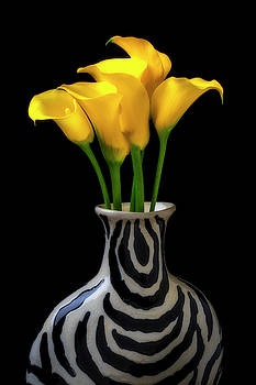 Graphic Vase And Calla lilies by Garry Gay