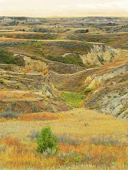 Grasslands Badlands September Reverie by Cris Fulton