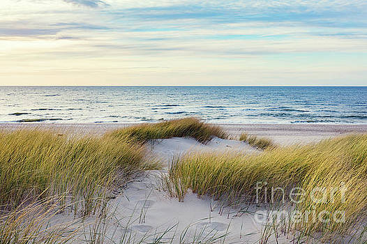 Grassy dunes and the Baltic sea by Michal Bednarek