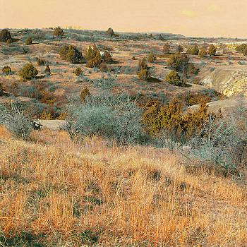 Grassy Ridge Reverie by Cris Fulton