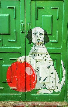 Green Door with dog in Arica Chile by David Smith