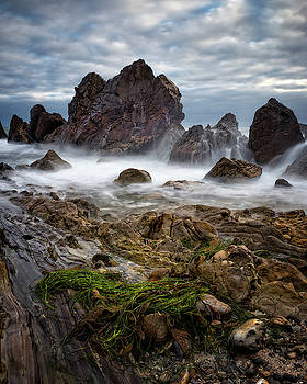 Sea Weeds By The Sea Stack by Nazeem Sheik