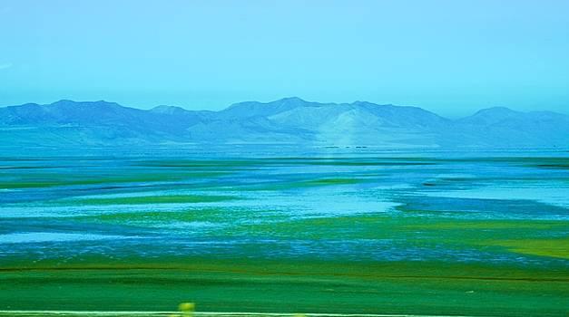 Green Expanse by Eric Tressler