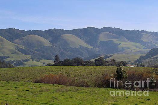 Green Hills by Katherine Erickson