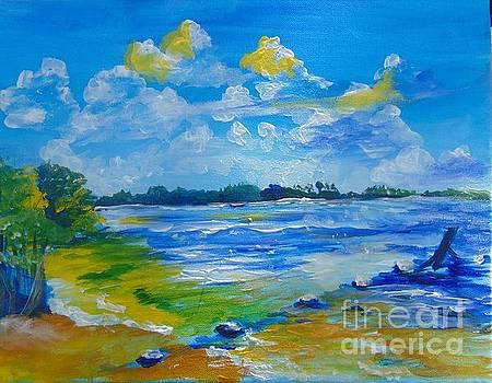Green Key Beach by Saundra Johnson