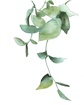 Green Leaves by Sophia Rodionov