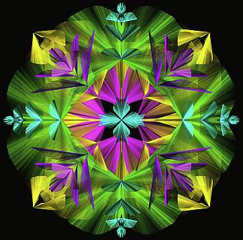 Green Mandala by Grace Iradian