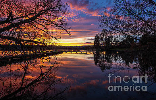 Greenlake Sunset Reflection Through the Trees by Mike Reid