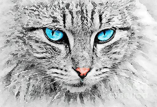 Grey Cat by Leon Woods