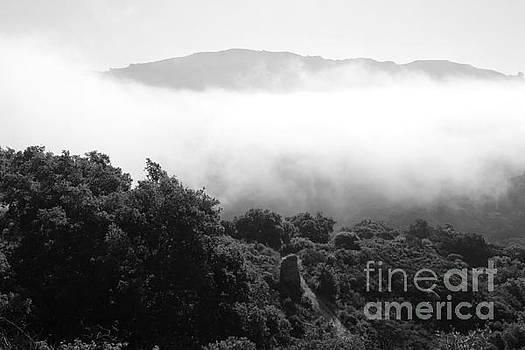 Grey Fog by Katherine Erickson