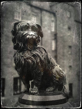 Greyfriar's Bobby by Dave Bowman