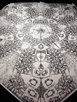 Grillo by Jeremy Robinson