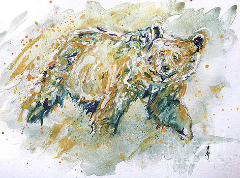 Grizzly Bear  by Andrew Marshall
