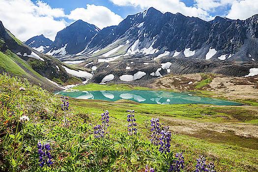 Grizzly Bear Lake by Tim Newton
