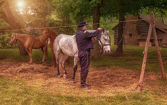 Grooming the Horse by Karen Varnas