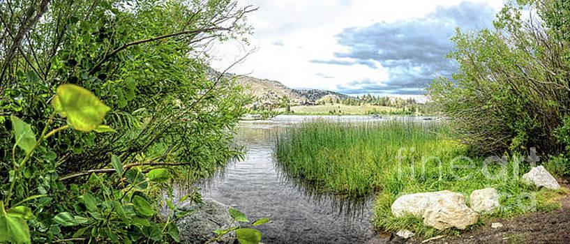 Gull Lake by Joe Lach