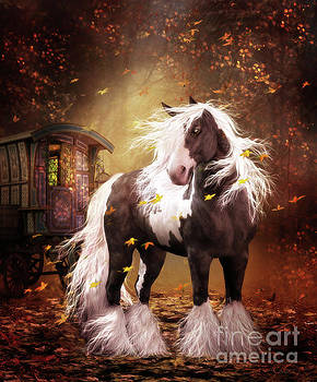 Gypsy Gold Vanner Horse by Shanina Conway