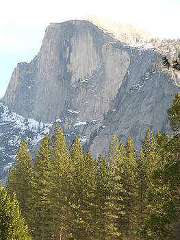 Half Dome by FD Graham