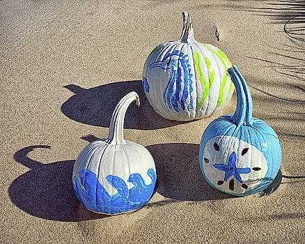 Halloween Blue and White Pumpkins on a Dune by Bill Swartwout Fine Art Photography