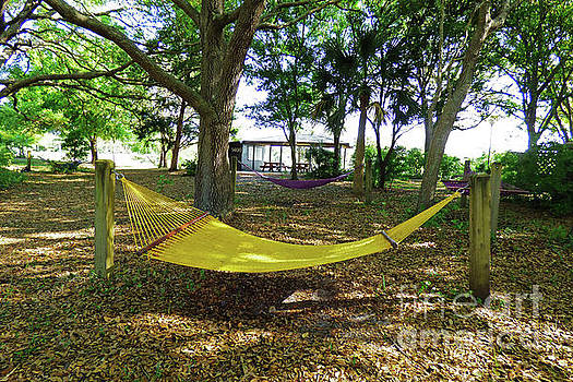 Sharon Williams Eng - Hammocks in the Shade of the Old Oak Tree