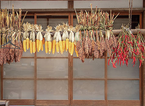Hanging Vegetables by Nate Richards