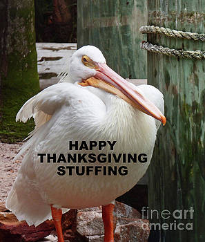 Sharon Williams Eng - Happy Thanksgiving Stuffing Card 300