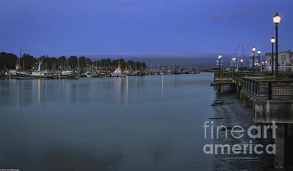 Harbor Lights by Mitch Shindelbower