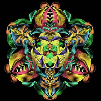 Harvest  Mandala by Grace Iradian