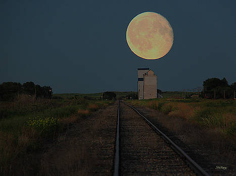 Harvest Moon by Andrea Lawrence