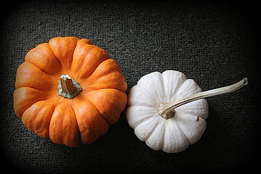 Harvest Time is Pumpkin Time - Still LIfe by Dora Sofia Caputo Photographic Design and Fine Art