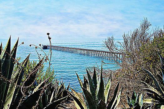 Glenn McCarthy Art and Photography - Haskell Beach Pier