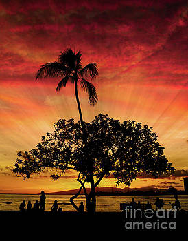 Hawaii 10 by Ben Yassa