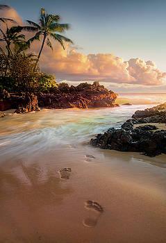 Meet me in the sea / Maui, Hawaii  by Nicholas Parker