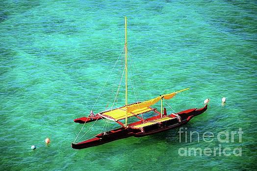 Hawaiian Dual Outrigger Sailing Canoe by D Davila