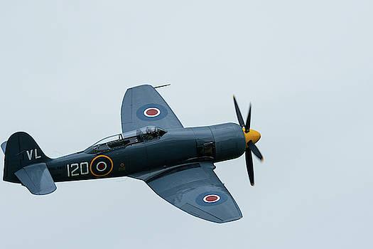 Hawker Sea Fury in flight by Scott Lyons