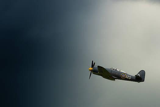 Hawker Sea Fury into the blue by Scott Lyons