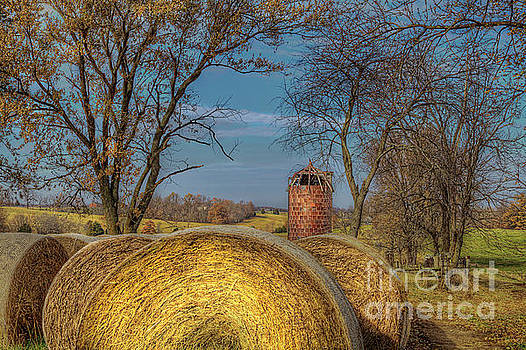 Larry Braun - Hay Bales and Silo