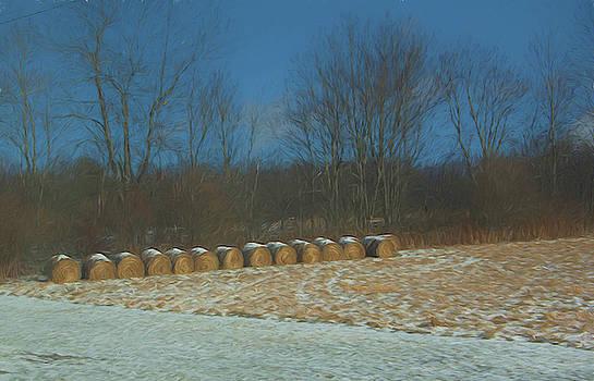 Hay Rolls In Snow by Alan Goldberg
