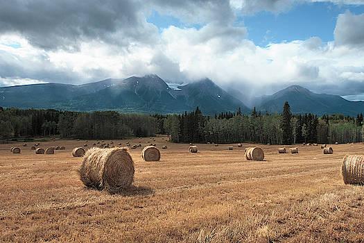 Hay Season in British Columbia II by Mary Lee Dereske