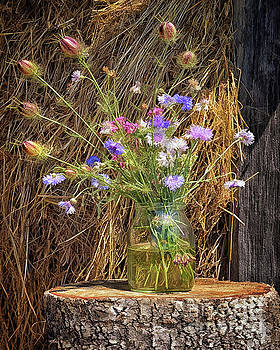 Hay Stack Bouquet by Norman Gabitzsch