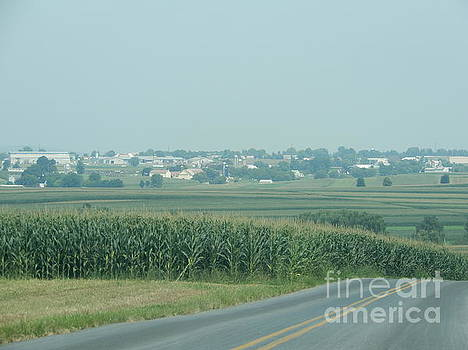 Christine Clark - Hazy Summer Day Amish Vista