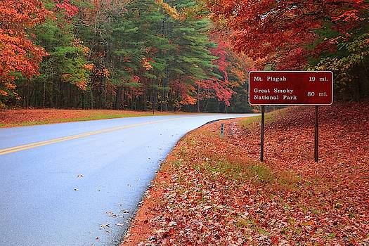 Heading To Pisgah Or The Great Smoky Mountain National Park On The Blue Ridge Parkway In Autumn by Carol Montoya