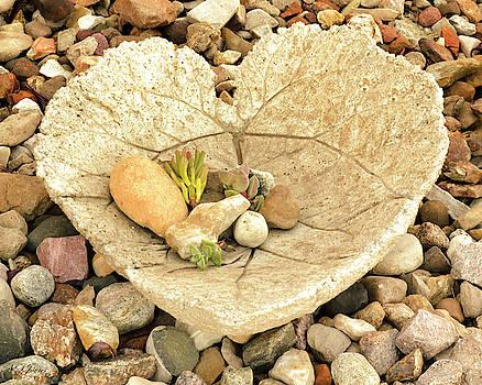 Love Set in Stone by Natalie Simon-Joens