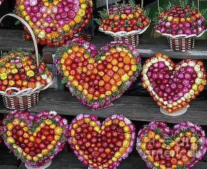 Hearts of Flowers by PJ Boylan